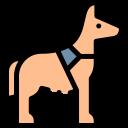 herts hiking hounds dog training abbots kings langley hertfordshire