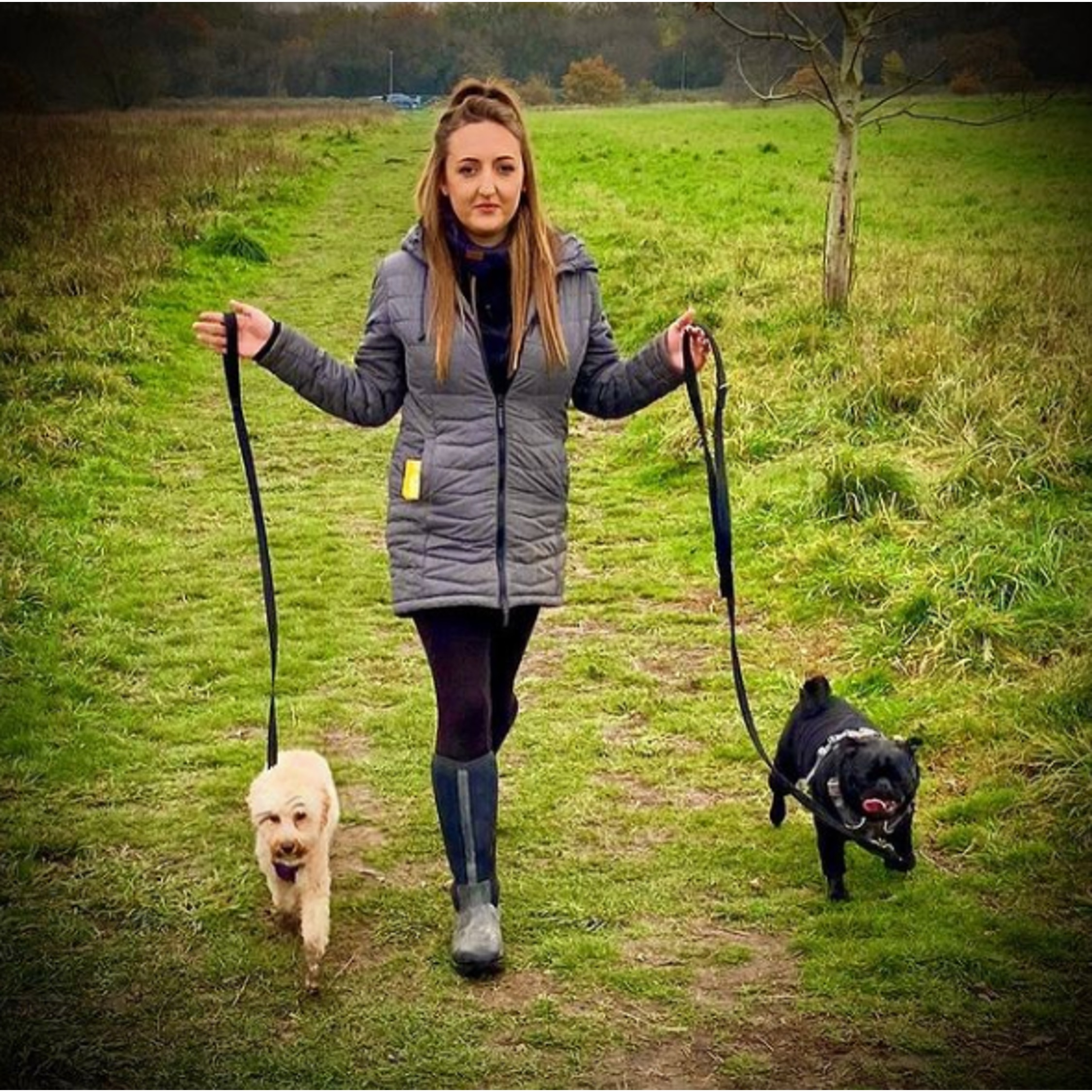 herts hiking hounds dog walking walker and training abbots kings langley hertfordshire pet photography29