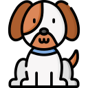 herts hiking hounds online puppy courses training abbots langley